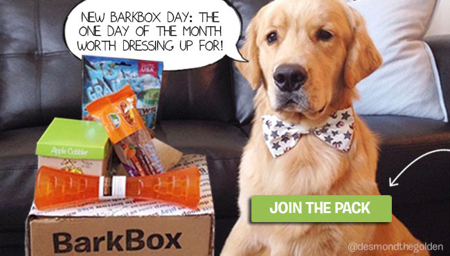 barkbox-ad-2
